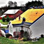 The Business of Eco Friendly Roofs
